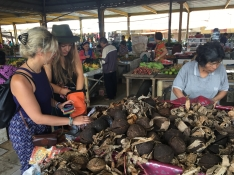 Tomohon - marché - sucre de coco